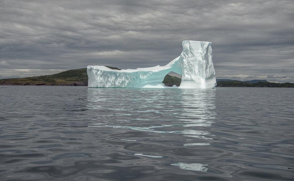 Newfoundland Iceberg 2015.jpg
