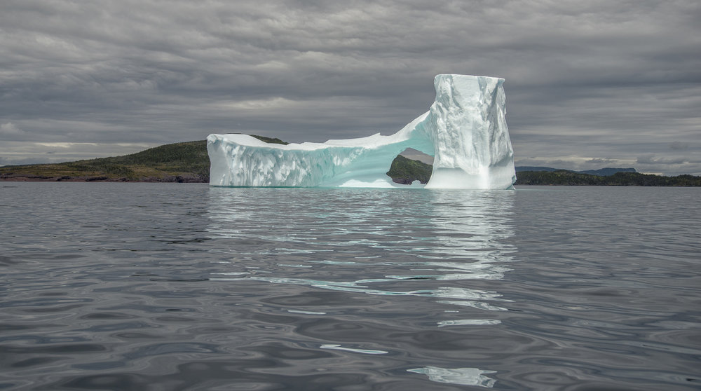 Cathedral iceberg in Iceberg Alley
