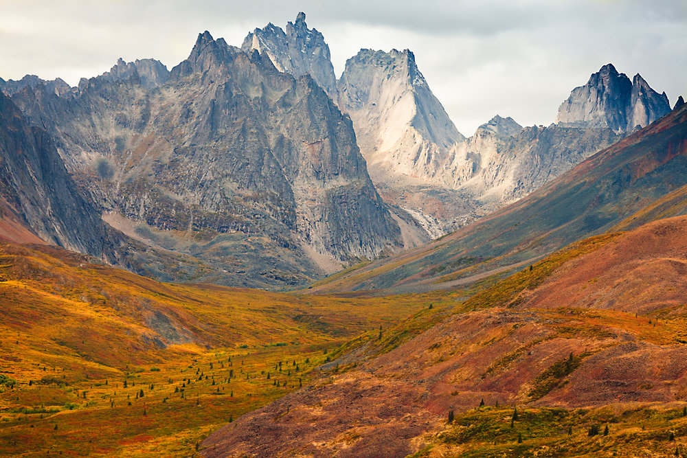 tombstone mountians in the autumn.jpg