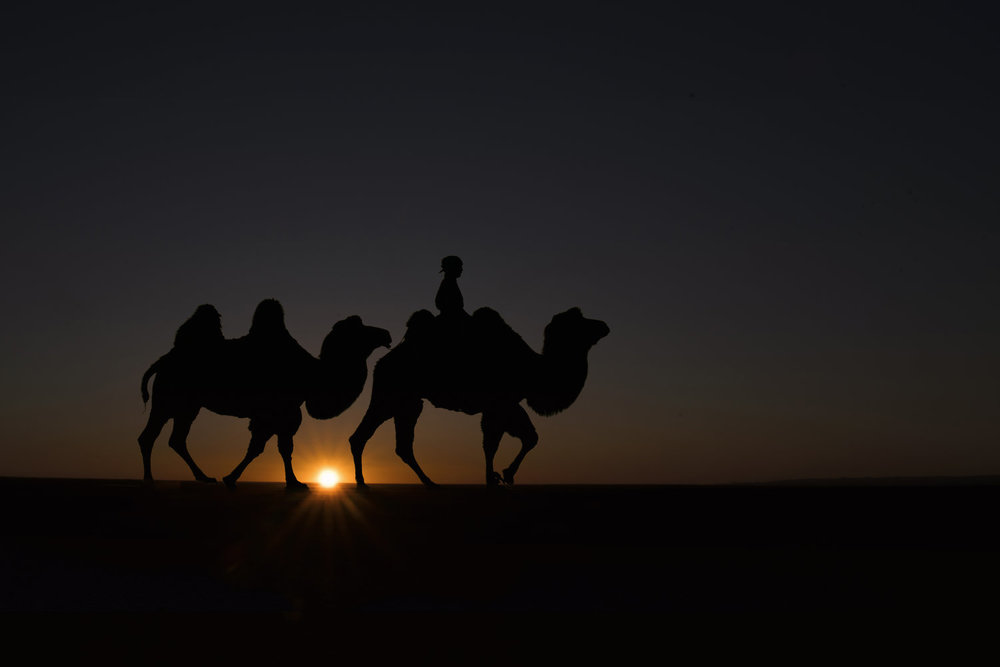 Eagle Hunters and Camel Herders - September 18 to October 2, 2018