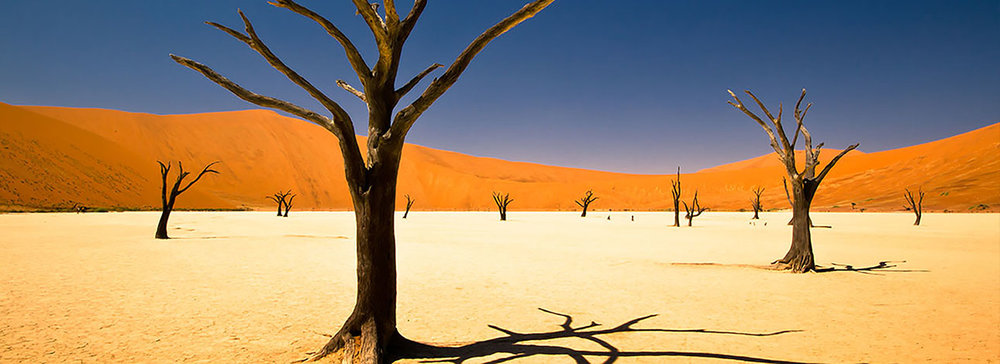 Africa-Namibia-and-Bostwana-Dunes-Delta-and-the-Kalahari-MH.jpg