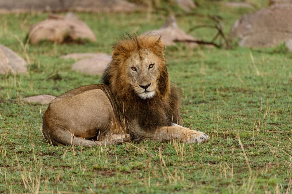 Africa-6114.jpg