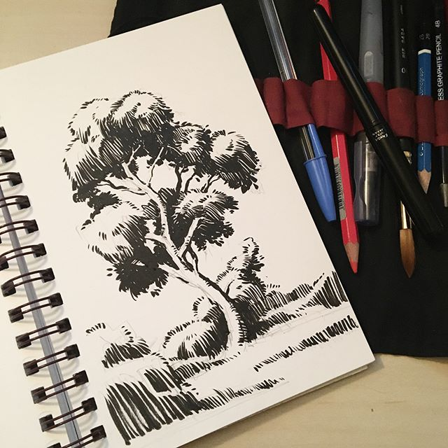 Inktober Day 9: I didn't get enough time at lunch to finish this little tree friend so I worked it up tonight from memory. The second shot shows how I like to lay in these ink drawings, just thinking about be light and dark values. • • • #inktober #inktober2017 #artistsofinstagram #instaartist #sketchbook #pleinair #pleinairpainting #pleinaire #landscape #landscapepainting #instaart #artoftheday #artofinstagram #adelaide #adelaidehills #drawing #painting #photooftheday #nature #dailypainting #photooftheday #ink  #comics #brushpen #cartoon