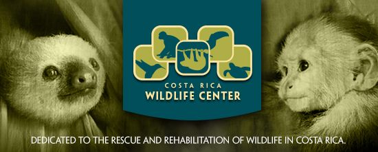 Costa Rica Animal Wildlife Center