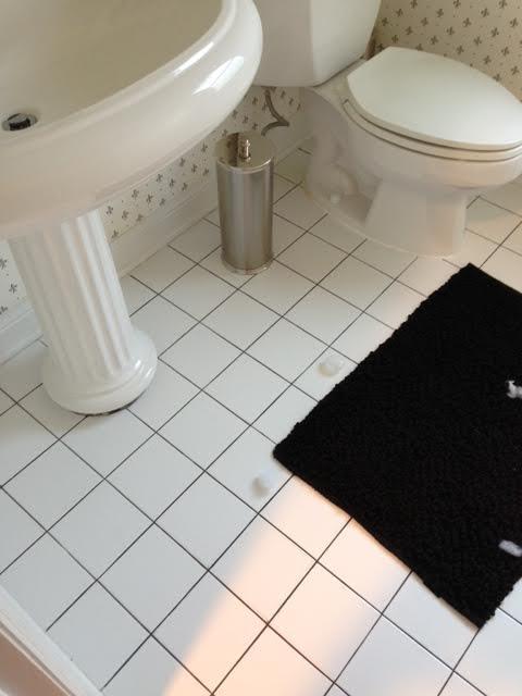 powder-room-flush-before-3.jpg