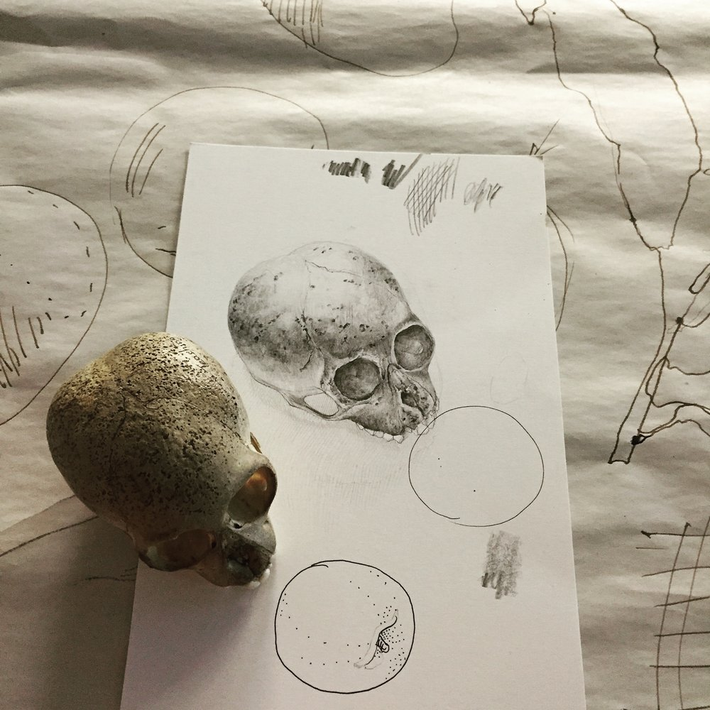 Remnants of my graphite and ink demos, plus a lemur skull