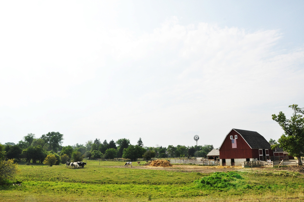 barn edited.jpg