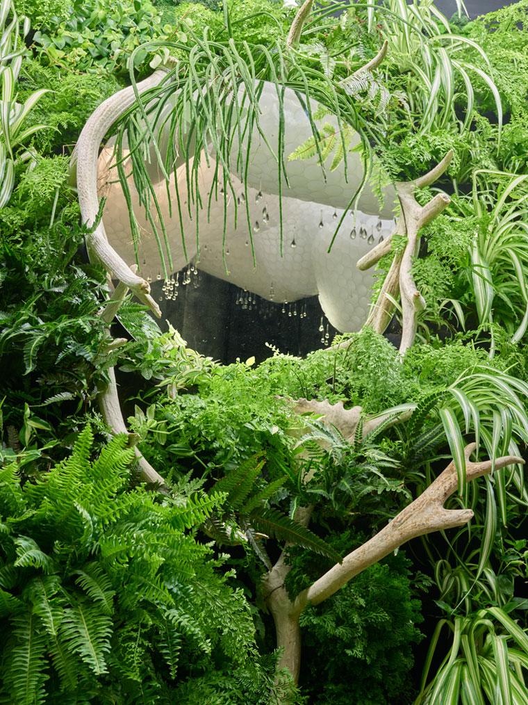 Dalat-garden.jpg