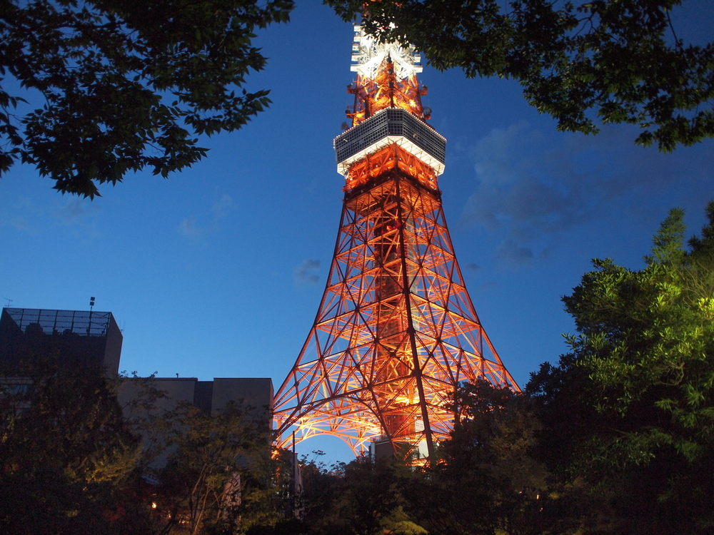 Tokyo Tower / 2009