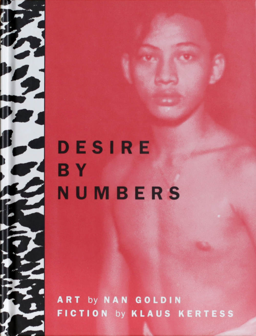 Nan Goldin  - Desire by Numbers