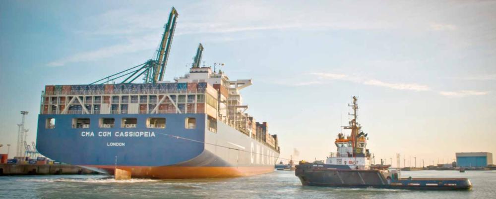 Als Belg vergeten we te vaak hoe belangrijk de haven van Brugge is voor de wereldeconomie. Het is de toegangspoort tot Europa, in de scheepsvaartwereld is de haven van Brugge net zo bekend als voor ons Parijs, New York, London of Shanghai! Investeren in huisvesting op die locatie is een gouden zaak!
