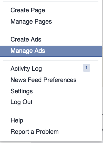 Click Manage Ads to get to the Facebook Ads Manager