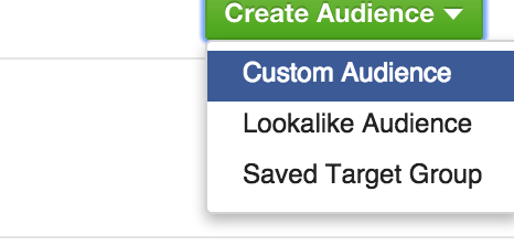 "Select ""Custom Audience."""