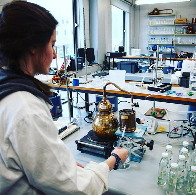 Vicky's been hard at work in the lab at @heriotwattuni trialling more yeasts in our whisky development programme. She brews the beer over the weekend, then distillation to low wines on Monday, and newmake on Tuesday.  #whisky #scotchwhisky #research #yeast #beer #brewing #distilling #distillation #distillery #edinburgh #scotch