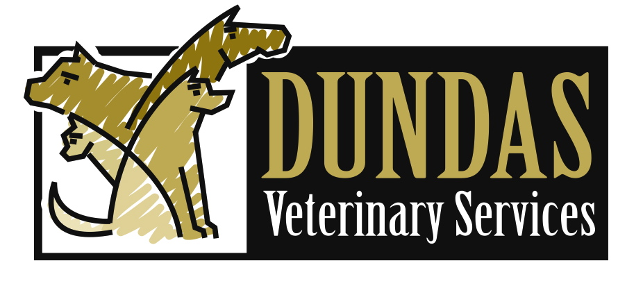 Dundas Veterinary Services