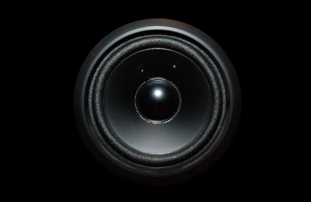 DSC_speaker.jpg
