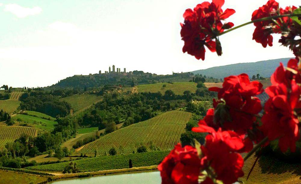 A view of San Gimignano
