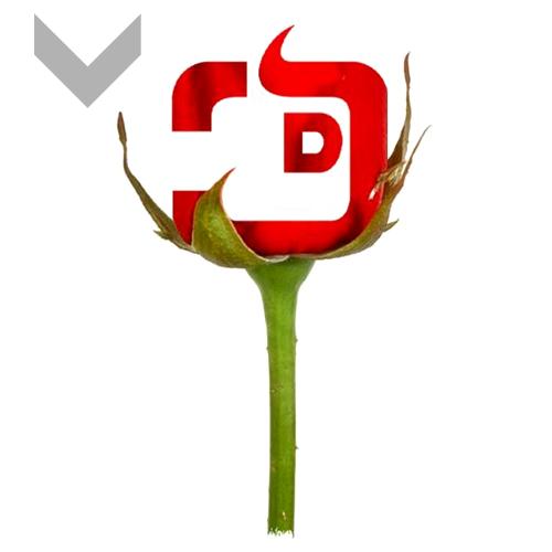 JD-Logo 1.jpg