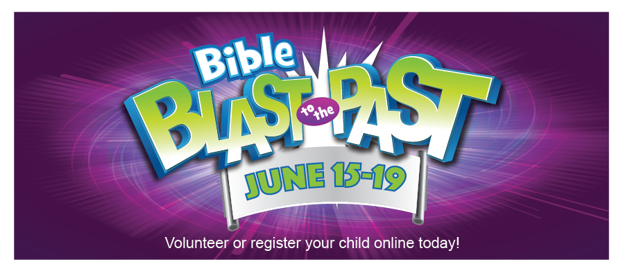 VBS 2015 WEB BANNER.png