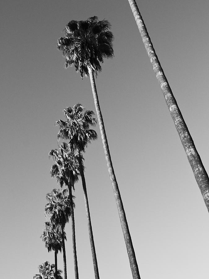LOS_ANGELES - 02 - 026.jpg