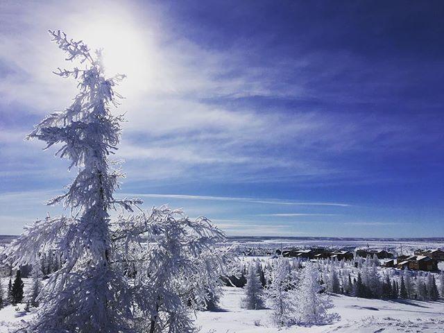 Hello, Kuujjuaq, Nunavik! #Makoons #IndigenousStoriesEverywhere