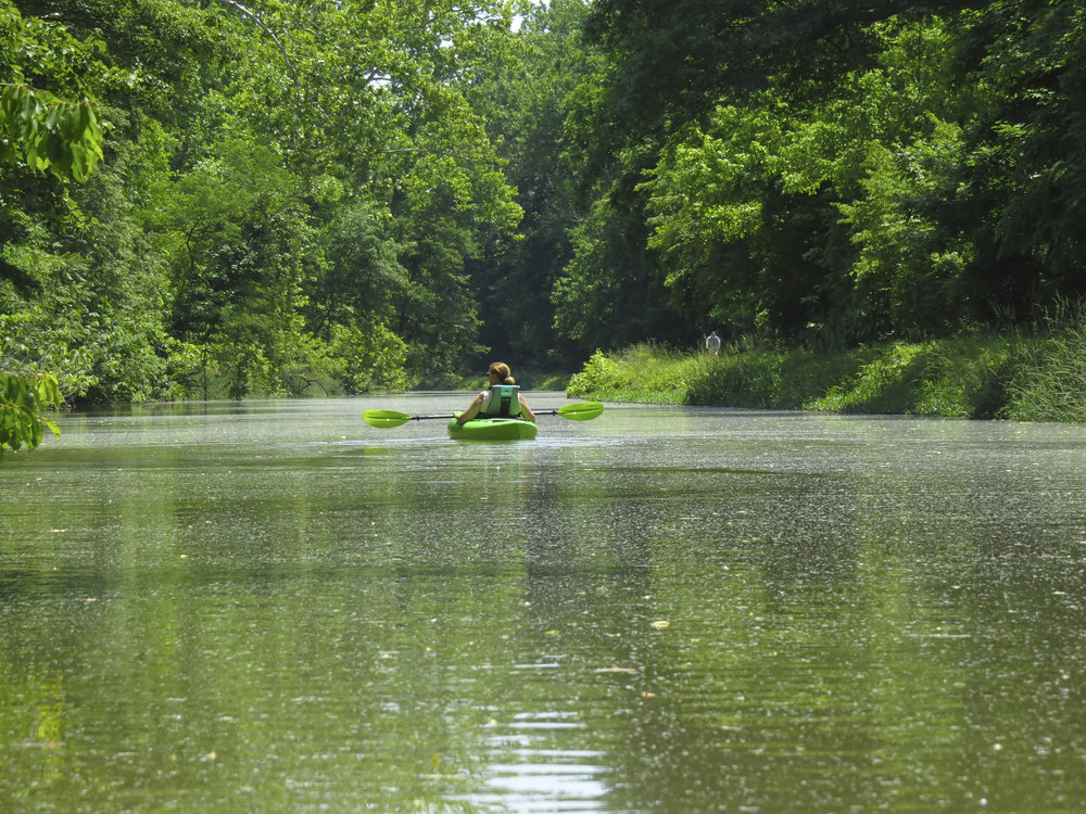kayaking-maryland-water-nature-outdoors-c&o-canal-potomac-river