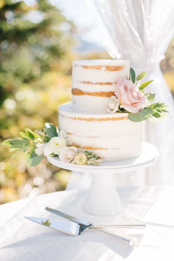 White Naken Wedding Cake from an Aspen Wedding