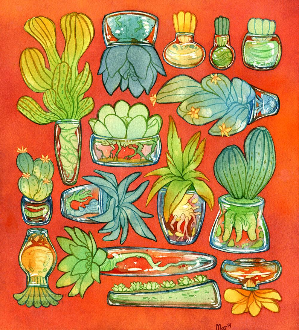 smallsucculent.jpg