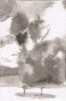 2008 3x5 Ink