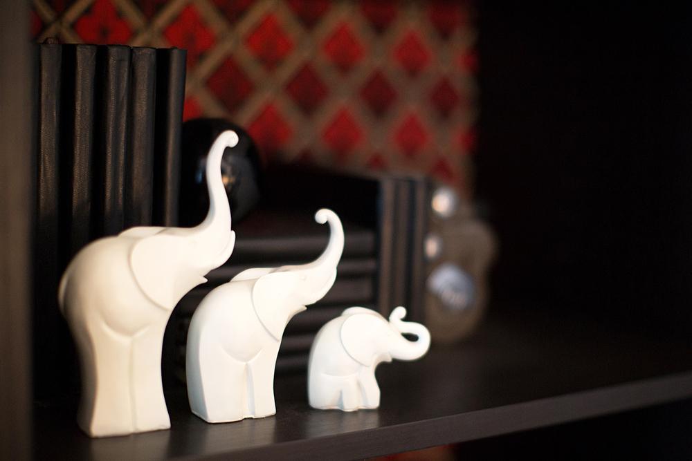 14_Cortese_Shelves4_Elephants.jpg