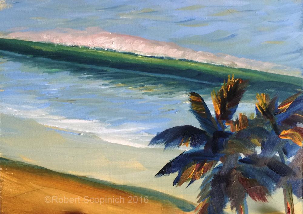 Broad Beach Palms