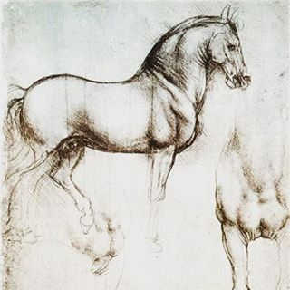 Study of Horses 1490/ Leonardo da Vinci #fineart #drawing #sketch #study #lifestudy #anatomy #master #davinci #leonardodavinci #design #inspiration #designinspiration #conceptdesign #productdesign #luxurydesign #creative #creativedesign #travel #designconcept #productdesign  #art #artist #fineartist #classical #tumblr #classicalart #minimal #classic #motivation