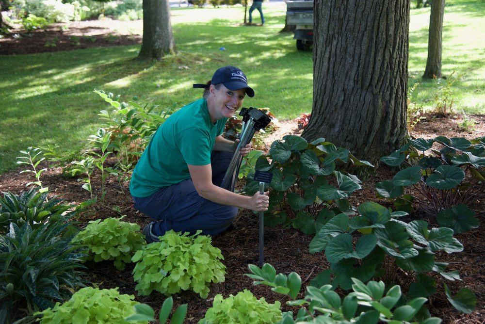 Supervisor of Landscapes and Gardens, Betsy Burgeson