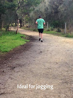 walk08.jpg