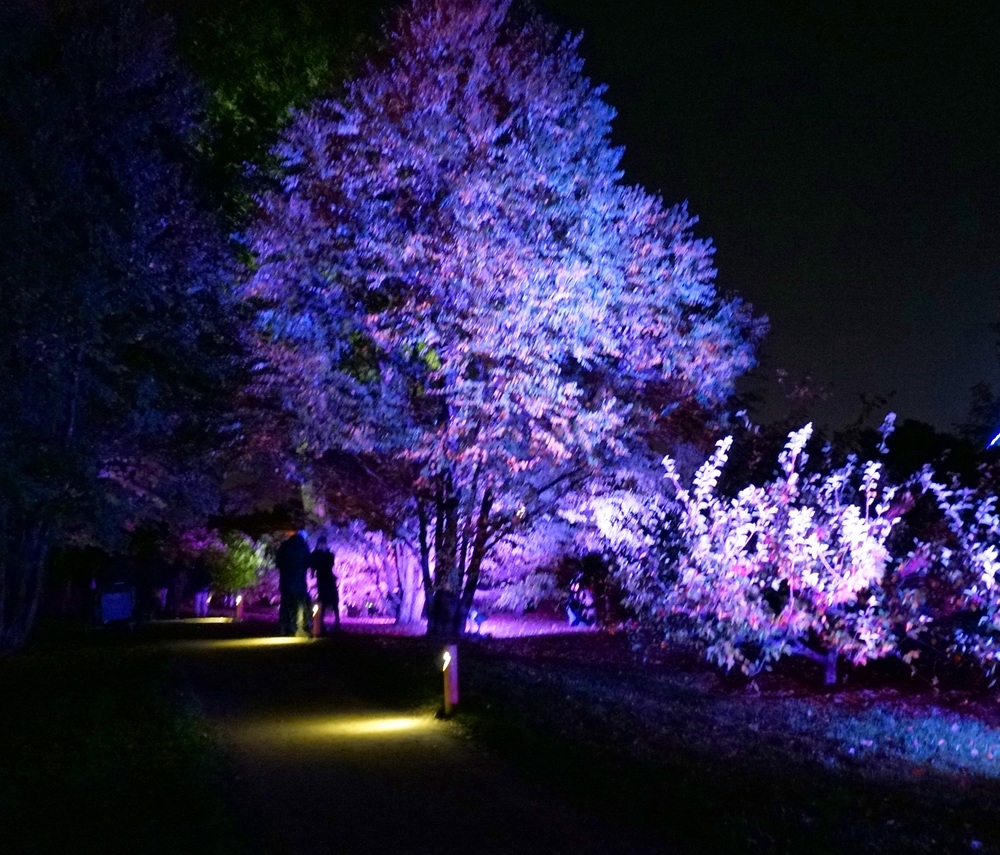 Botanical Gardens Montreal