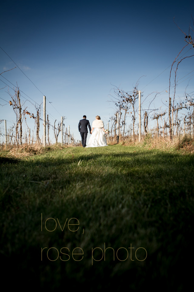 arica + matt vineyard wedding autumn chicago -011.jpg