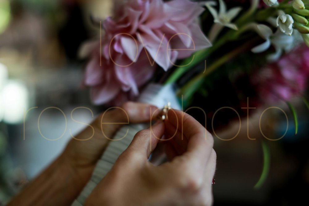 Rose Photo Asheville Wedding Photographer Nasheville Weddings Charleston Bride Chicago photojournalist weddings -2.jpg