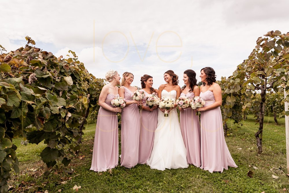 Becca + Jeff best of chicago wedding photography big day photos bridesmaids dress wedding band groomsmen vineyard wedding venue-4.jpg