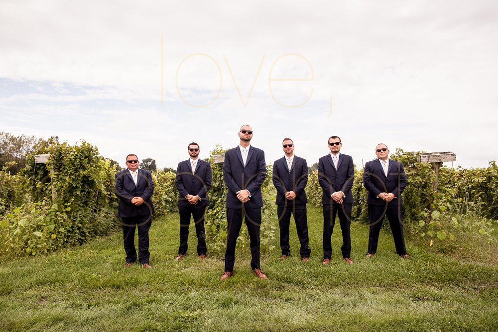 Becca + Jeff best of chicago wedding photography big day photos bridesmaids dress wedding band groomsmen vineyard wedding venue-7.jpg