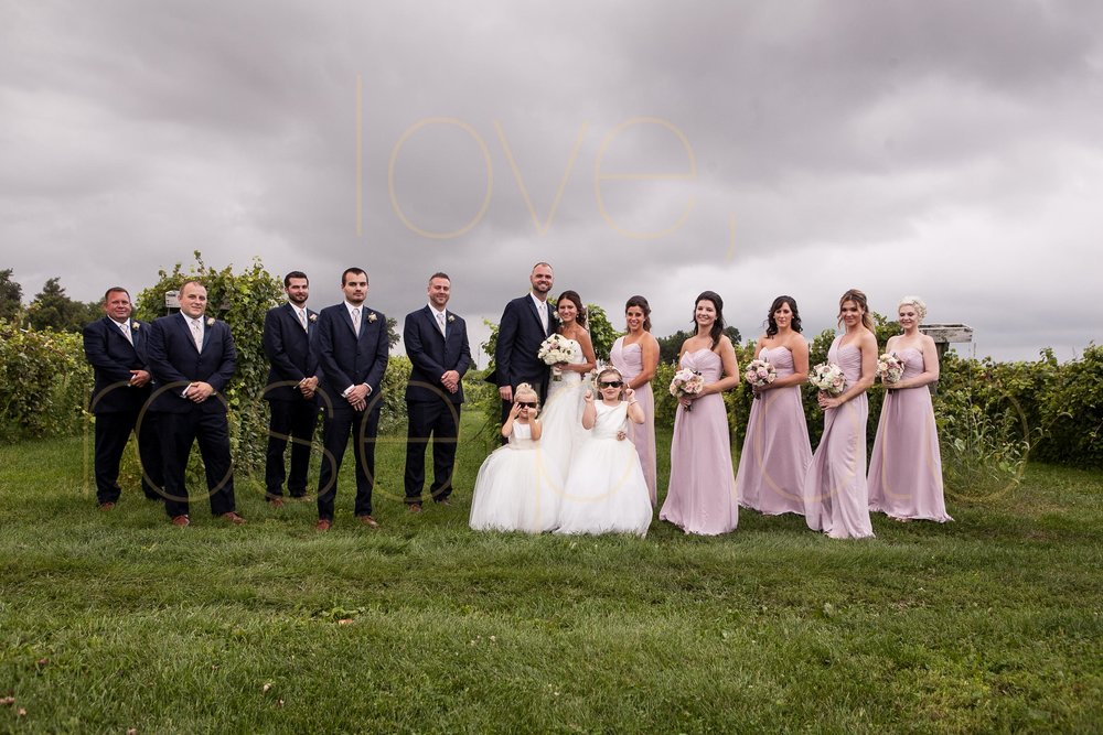Becca + Jeff best of chicago wedding photography big day photos bridesmaids dress wedding band groomsmen vineyard wedding venue-24.jpg