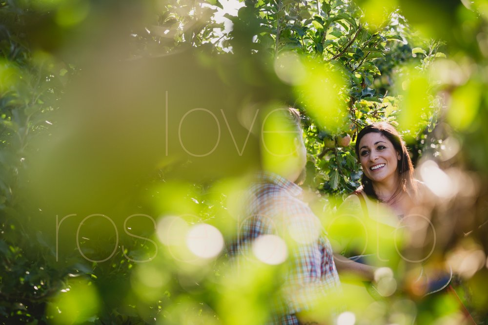 Jane Kramer Ashevegas Jason Sanford WNC Asheville wedding engagement shoot by Rose Photo-13.jpg