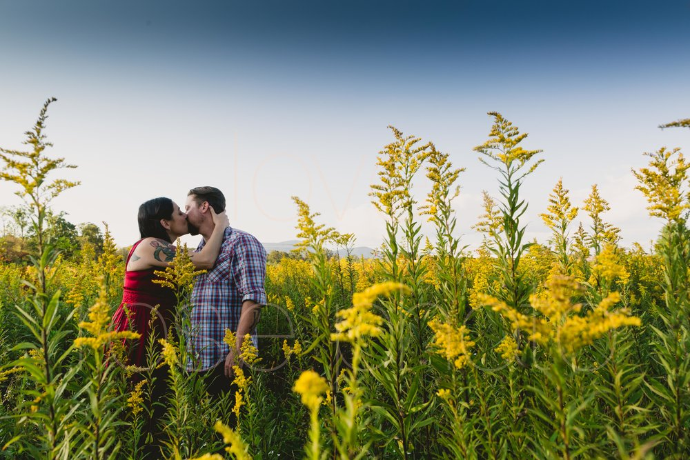 Jane Kramer Ashevegas Jason Sanford WNC Asheville wedding engagement shoot by Rose Photo-19.jpg