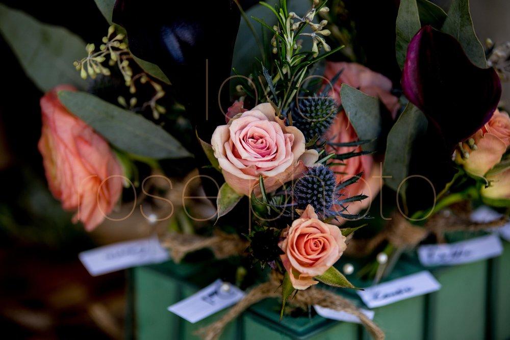 Jane Krame + Jason Ashevegas married asheville best wedding photographers -6.jpg