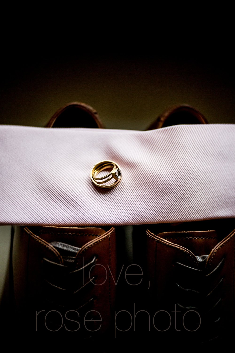BRACEY rose photo chicago nyc wedding photographer asheville-6.jpg