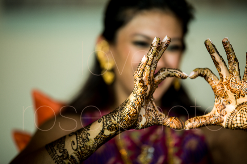 chicago indian wedding photographer bride style rose photo social media share-7.jpg