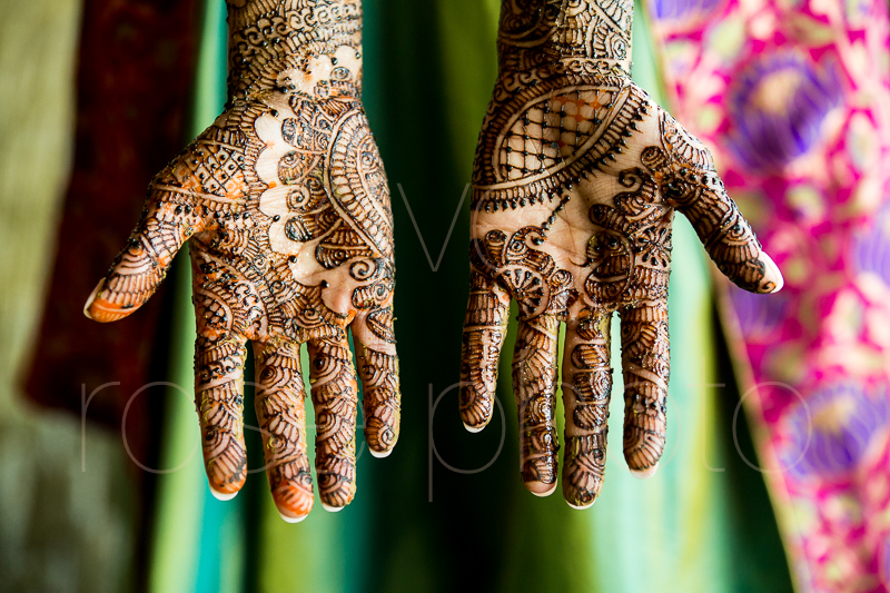 chicago indian wedding photographer bride style rose photo social media share-10.jpg