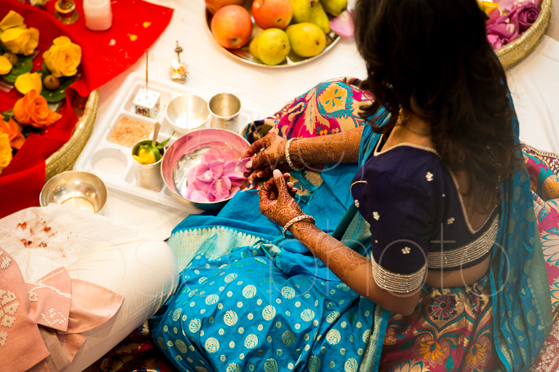 chicago indian wedding photographer bride style rose photo social media share-14.jpg