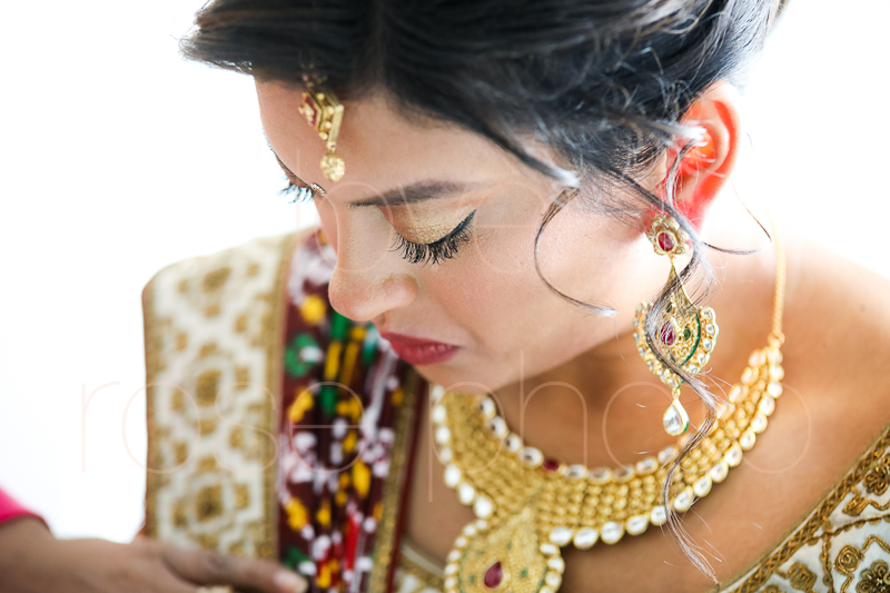 chicago indian wedding photographer bride style rose photo social media share-49.jpg