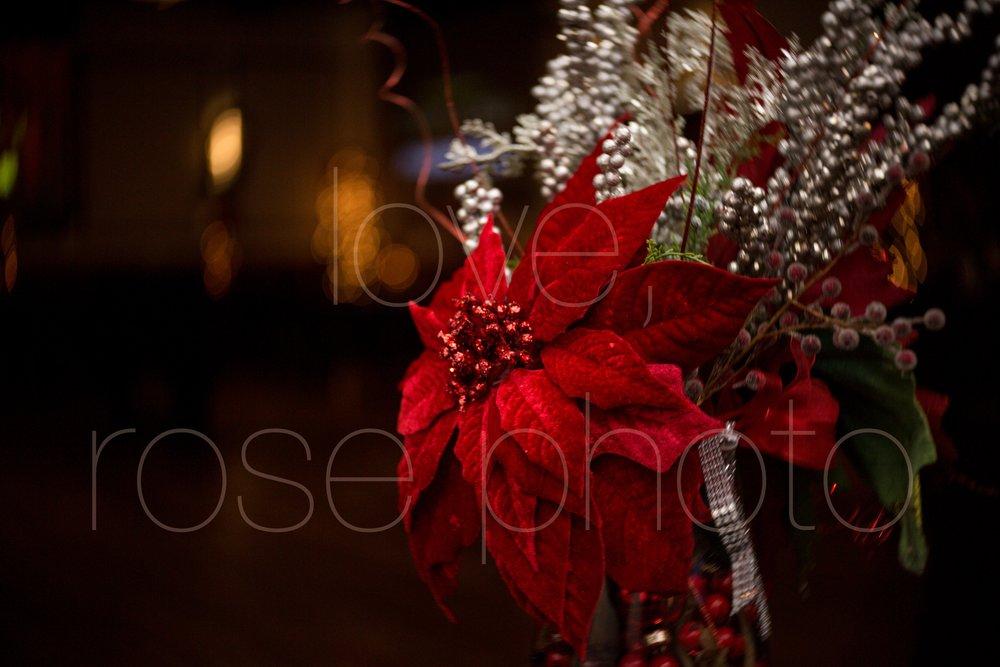 best wedding photographer rose photo asheville chicago new york photo collective-22.jpg