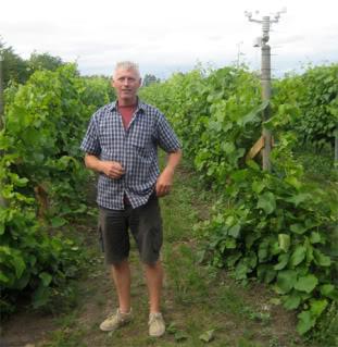 Danish Wine Country